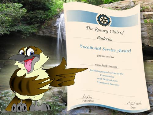 Buderim web site wins an award