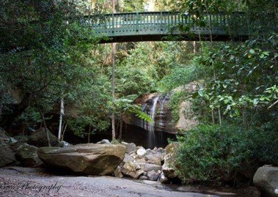 buderim-falls-bridge