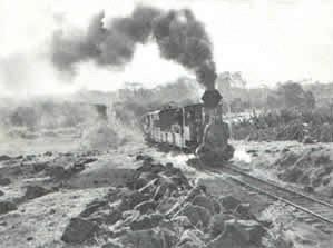 Buderim Tramway Train
