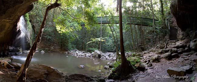 buderim-waterfall-pano