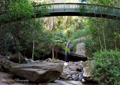 buderimfalls-bridge