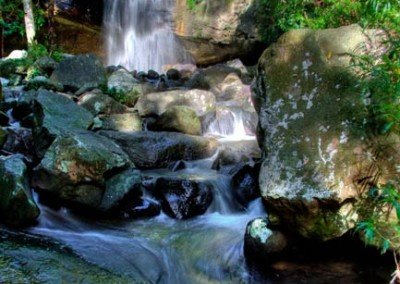 buderimwaterfalls-stream