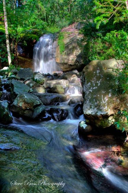 Buderim Forest Waterfall