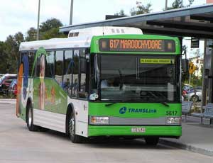 Buderim Public Transport