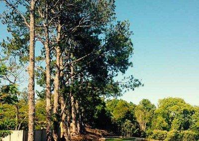Buderim Village Park