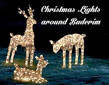 Christmas lights in Buderim